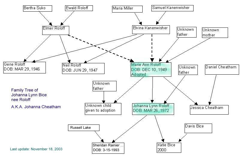 Johanna Lynn Bice (nee Roloff) family tree diagram
